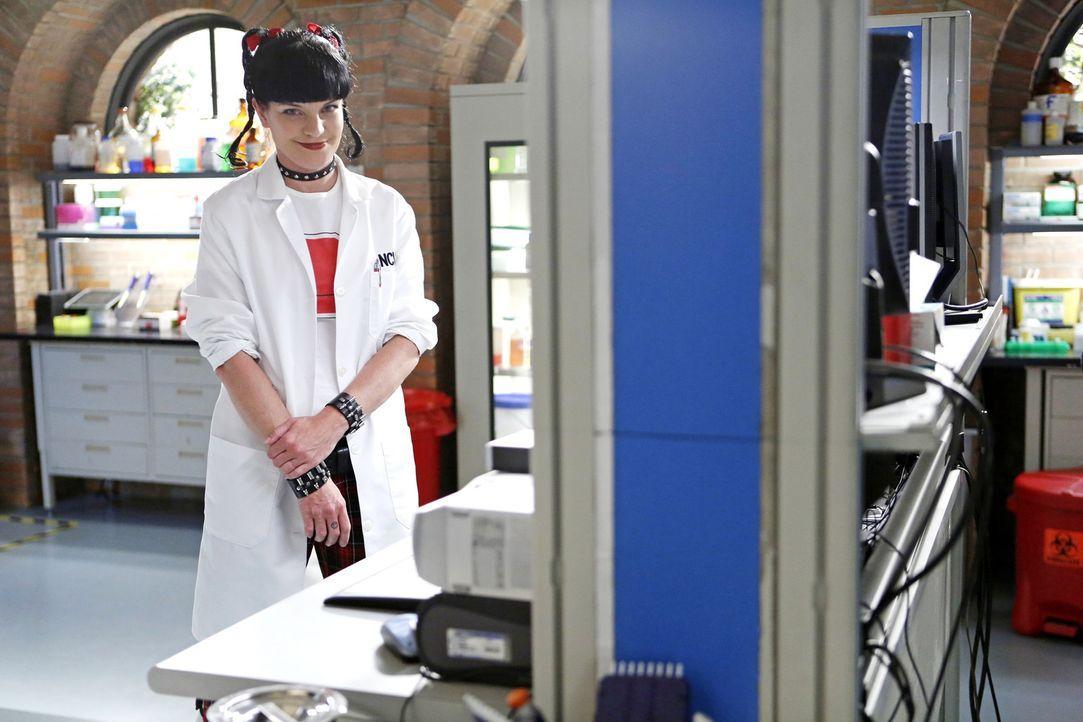 Gibt alles, um einen neuen Fall zu lösen: Abby (Pauley Perrette) ... - Bildquelle: CBS Television