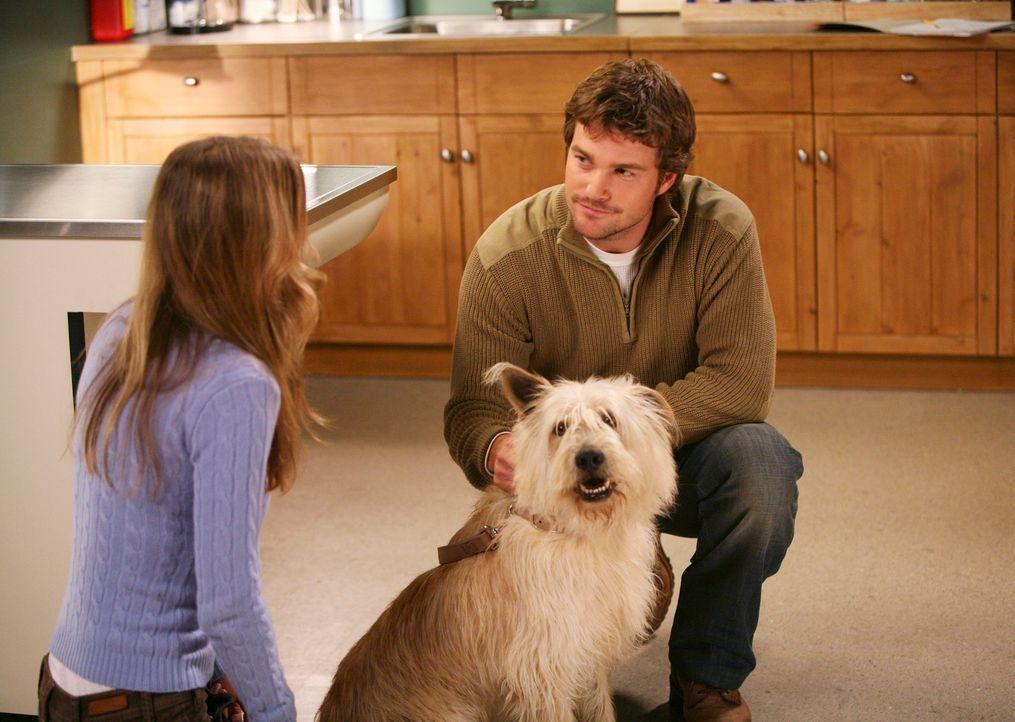 Während Derek private Probleme hat, ist Meredith (Ellen Pompeo, l.) gut gelaunt – ob das an der Gesellschaft von Dr. Finn Dandridge (Chris O'Donnell... - Bildquelle: Touchstone Television