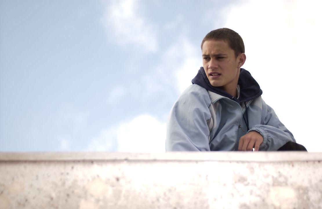 Als Wills neues Büro vom bosnischen Jungen Miro (Rafi Gavron) wiederholt ausgeraubt wird, heftet sich Will an dessen Fersen. Eine Verfolgung mit fa... - Bildquelle: Miramax Films.  All Rights Reserved.