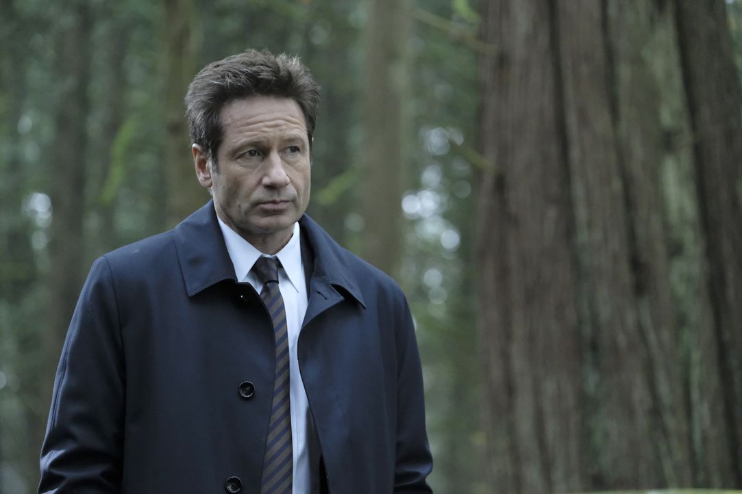 Als Mulder (David Duchovny) und Scully einem Hinweis auf Skinners Verbleib nachgehen, treffen sie in Kentucky auf einen Obdachlosen, der ihnen ständ... - Bildquelle: Eric Millner 2018 Fox and its related entities.  All rights reserved.