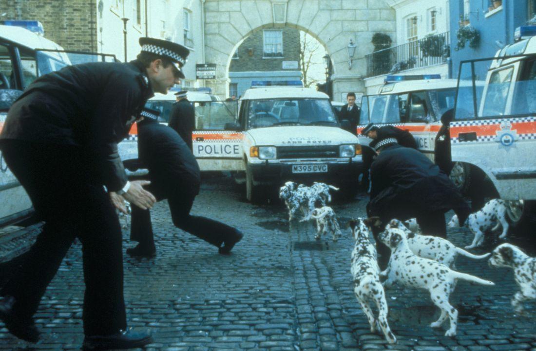 Die Polizei steht vor einem Rätsel ... - Bildquelle: Buena Vista Pictures