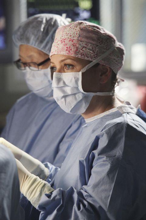 Während Arizona (Jessica Capshaw) alles versucht um Callie zurückzubekommen, schwirren im Krankenhaus Erstsemester herum, die den Ärzten für ein... - Bildquelle: ABC Studios