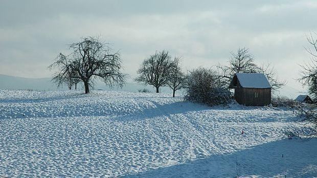 silvesterim schnee