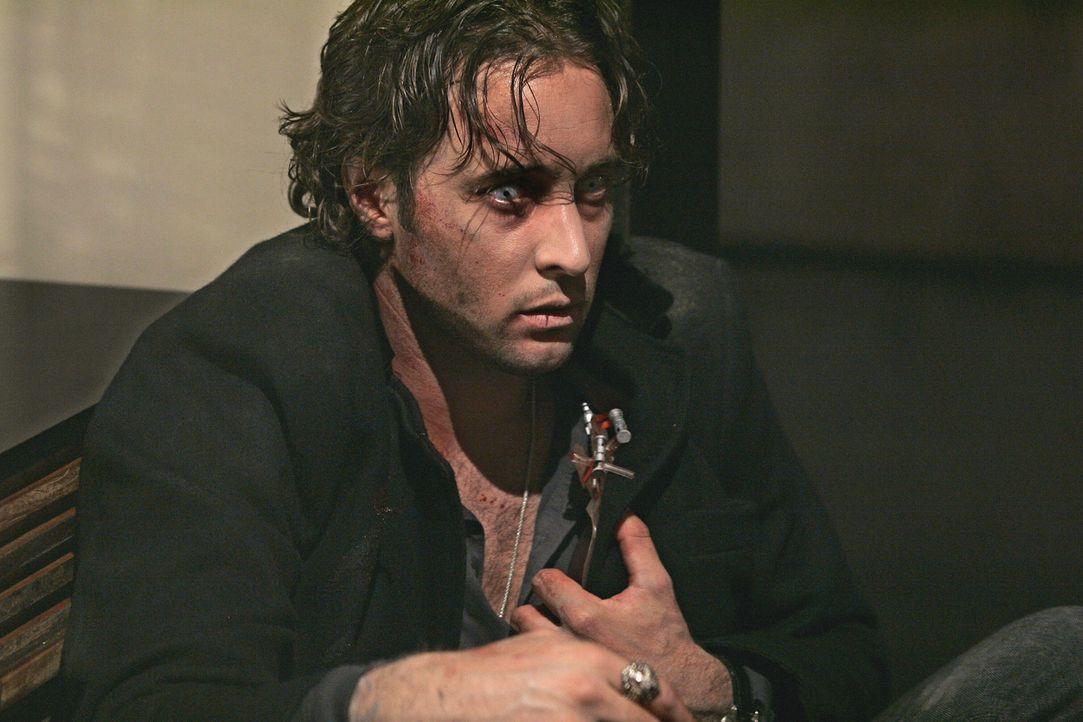 Rettung in letzter Minute: Mick (Alex O'Loughlin) kann eine Blutkonserve ergattern ... - Bildquelle: Warner Brothers