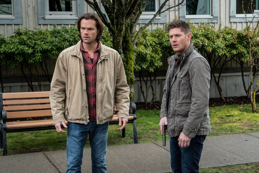 Während sich Sam (Jared Padalecki, l.) und Dean (Jensen Ackles, r.) um eine verfluchte Kleinstadt kümmern, trifft Metatron vollkommen unerwartet ein... - Bildquelle: 2014 Warner Brothers