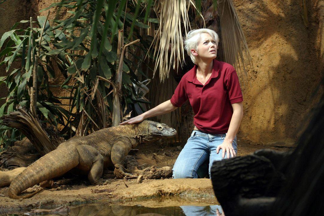 Abby (Hannah Spearritt) findet Gefallen an dem süßen Tierchen ... - Bildquelle: ITV Plc