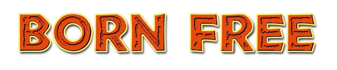 """""""FREI GEBOREN - KÖNIGIN DER WILDNIS"""" - Originaltitel Logo - Bildquelle: 1965, renewed 1993 Columbia Pictures Industries, Inc. All Rights Reserved."""
