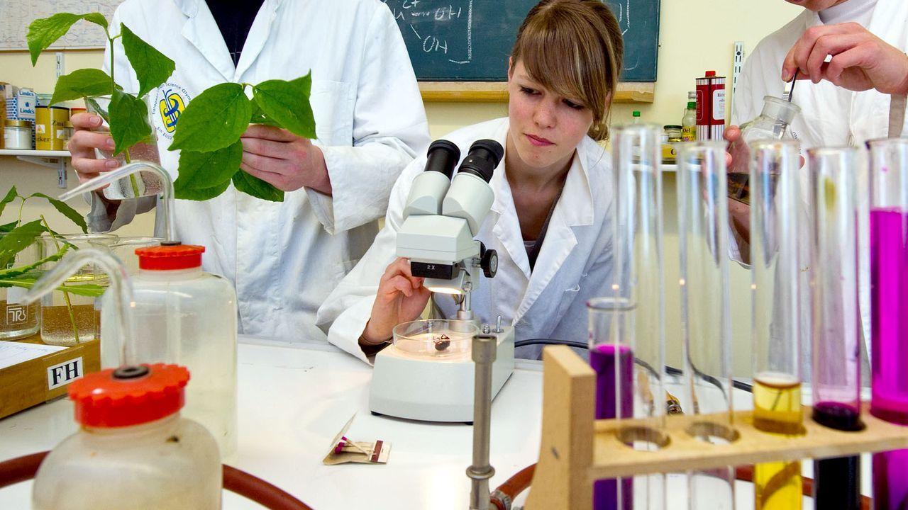 Biologie - Bildquelle: dpa