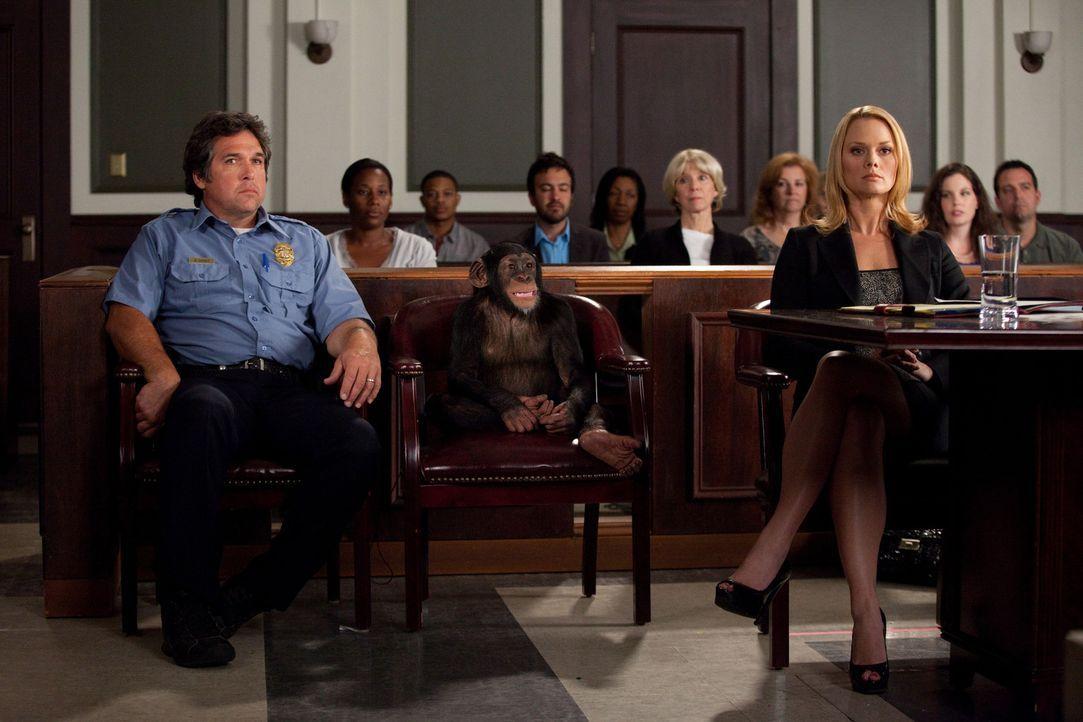 Kim (Kate Levering, r.) scheint einen absurden Fall an Land gezogen zu haben. Ein Klient kommt zu ihr ins Büro und teilt ihr mit, dass er sich mit... - Bildquelle: 2009 Sony Pictures Television Inc. All Rights Reserved.