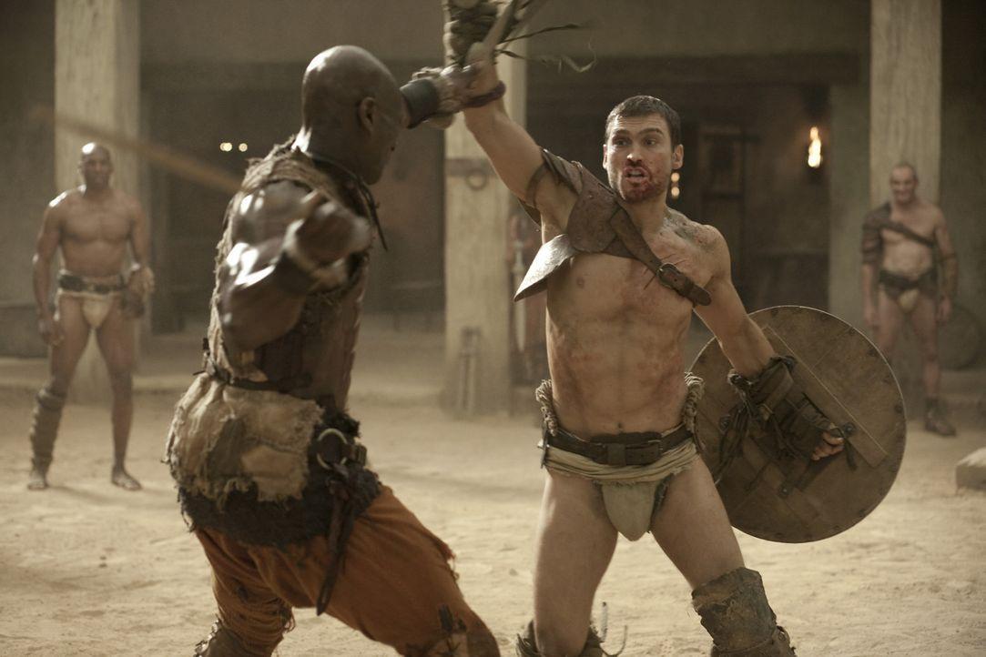 Da Drago (Peter Mensah, l.) als einziger Gladiator jemals lebend die Arena nach einem Kampf gegen Theokoles verlassen hat, weiß er, wie gefährlich... - Bildquelle: 2010 Starz Entertainment, LLC