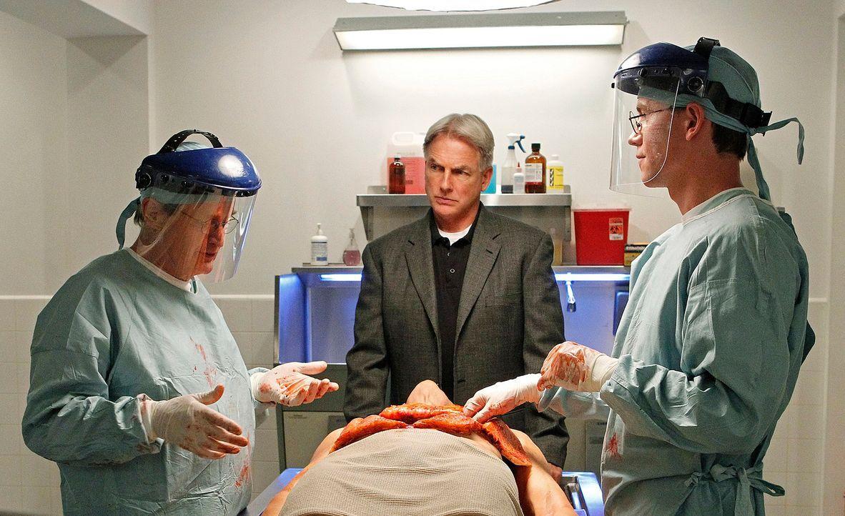 Hoffen, der wahren Todesursache auf die Spur zu kommen: Ducky (David McCallum, l.), Gibbs (Mark Harmon, M.) und Jimmy (Brian Dietzen, r.) ... - Bildquelle: CBS Television