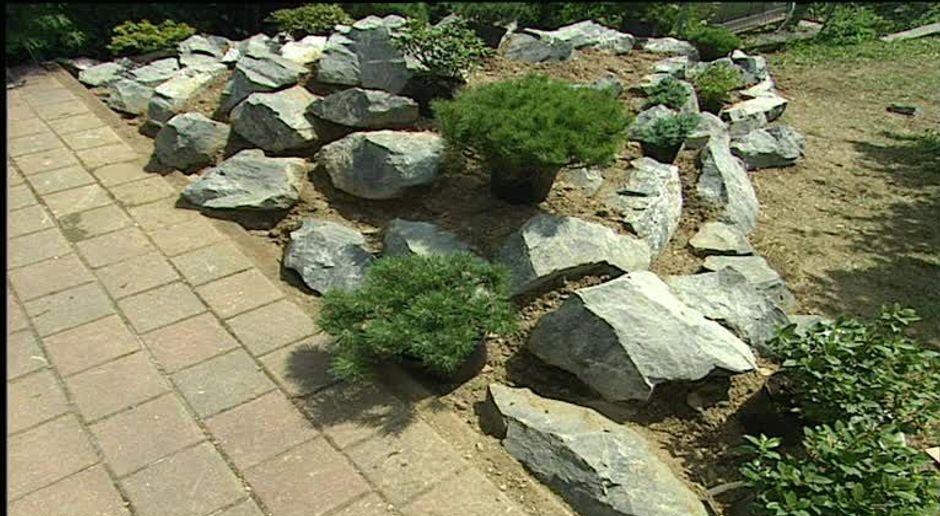 Kuhle Startseite Dekoration Garten Mit Steinbeet #21: SAT.1 Gold