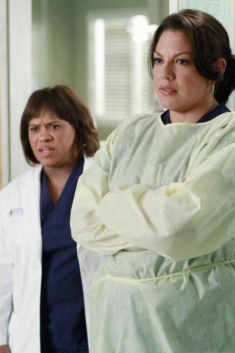 """Verlangen von Webber, die """"Gunther""""-Maßnahme: Bailey (Chandra Wilson, l.) und Callie (Sara Ramirez, r.) ... - Bildquelle: ABC Studios"""