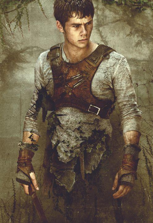 Thomas (Dylan O'Brien) landet mit Gedächtnisverlust auf einer von Mauern umringten Lichtung und trifft dort auf eine Gruppe von Jungs, deren Mitglie... - Bildquelle: 2014 Twentieth Century Fox Film Corporation.  All rights reserved.