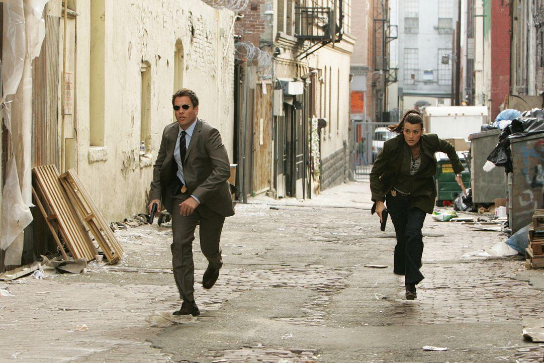 Ein Wettlauf mit der Zeit: Tony (Michael Weatherly, l.) und Ziva (Cote de Pablo, r.) ... - Bildquelle: CBS Television