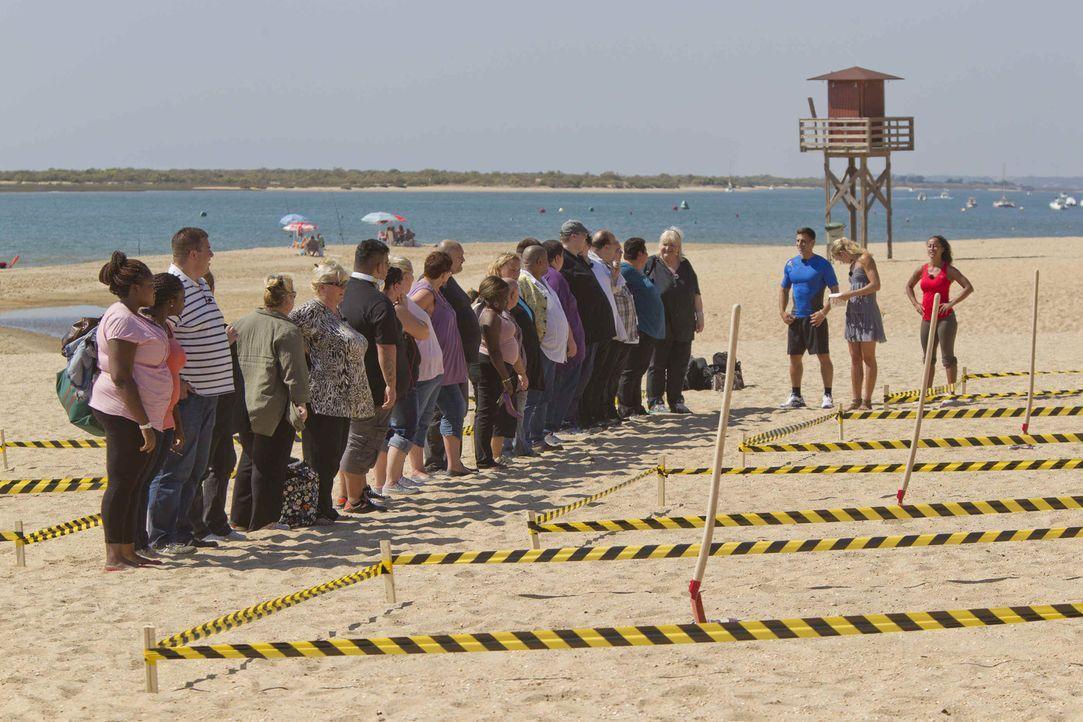 Die Paare müssen am Strand Kisten ausbuddeln. In sengender Hitze und mit mehreren Kilos Übergewicht gestaltet sich diese Aufgabe aber schwerer als a... - Bildquelle: Enrique Cano SAT.1