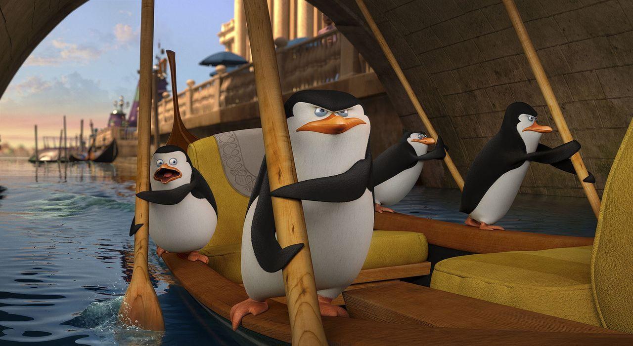 Private (l.), Skipper (2.v.l.), Rico (2.v.r.) und Kowalski (r.) sind auf der Suche nach Dr. Octavius Brine. Der hatte die Pinguine kurz zuvor entfüh... - Bildquelle: 2014 DreamWorks Animation, L.L.C.  All rights reserved.