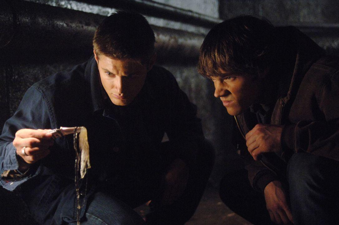 Sam (Jared Padalecki, r.) und Dean (Jensen Ackles, l.) machen eine grausame Entdeckung ... - Bildquelle: Warner Bros. Television