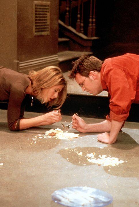 Rachel (Jennifer Aniston, l.) und Chandler (Matthew Perry, r.) sind so wild auf Käsekuchen, dass sie ihn auch vom Boden essen. - Bildquelle: TM+  2000 WARNER BROS.