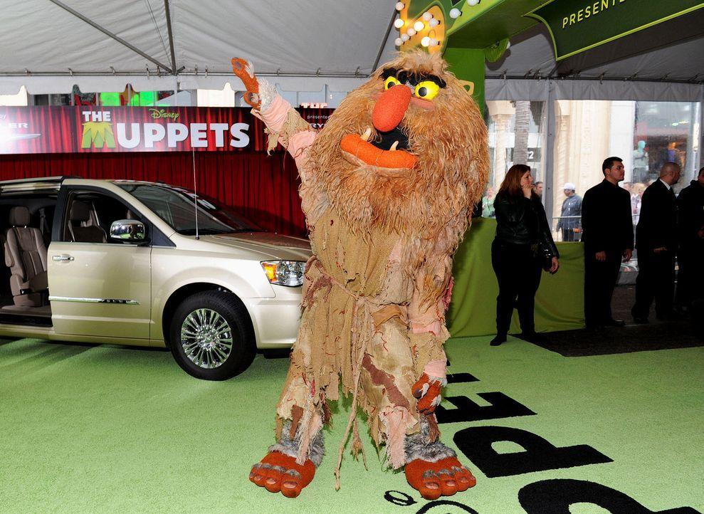 muppets-premiere-la-darsteller3-wireimagejpg 1900 x 1387 - Bildquelle: WireImage