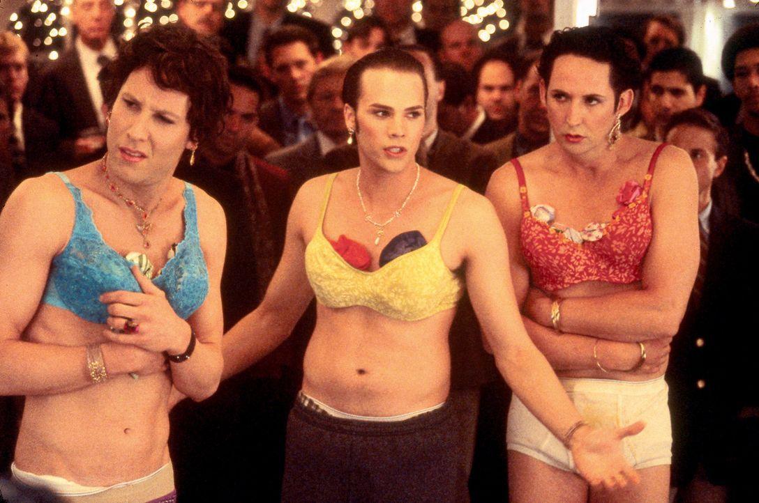 Als die chaotischen Freunde Dave (Barry Watson, M.), Adam (Michael Rosenbaum, l.) und Doofer (Harland Williams, r.) aus ihrem Verbindungshaus fliege... - Bildquelle: Touchstone Pictures
