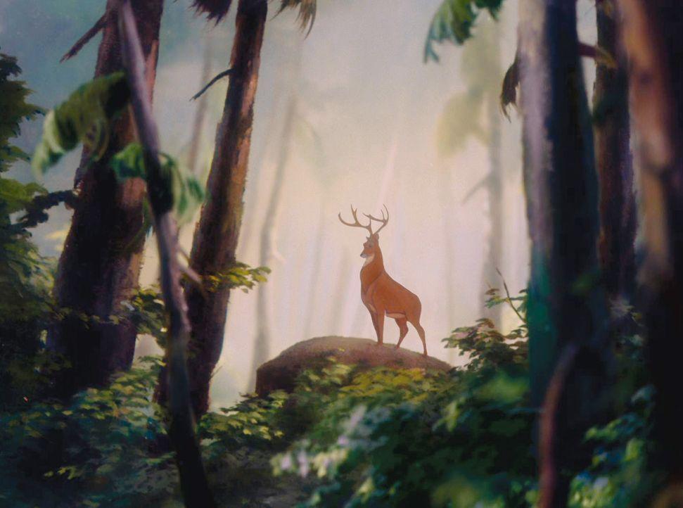 Aus welchem Film stammt  - Bildquelle: Disney