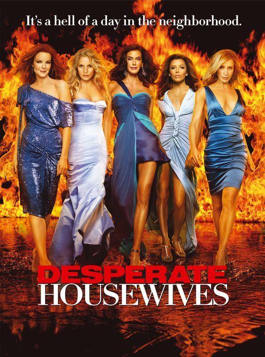 (4. Staffel) - Ein Mordstag in der Naschbarschaft: Lynette Scavo (Felicity Huffman, r.), Bree Hodge (Marcia Cross, l.), Gabrielle Lang (Eva Longoria... - Bildquelle: ABC Studios