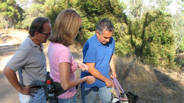 Diana (M.) und Lou (l.) wenden sich hilfesuchend an Cesar Millan (r.): Mix, d...