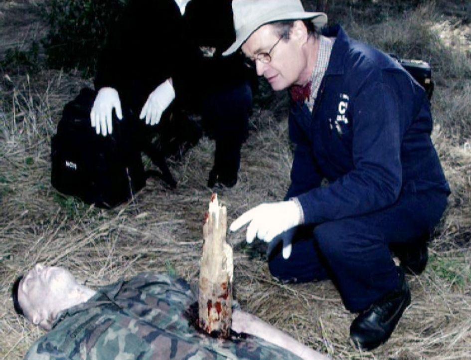 Der Marine Sgt. Thomas Grimm (Kevin Sizemore, vorne) wird, scheinbar von einem Baumstumpf durchbohrt, von ein paar Jugendlichen gefunden. Ducky (Dav... - Bildquelle: CBS Television