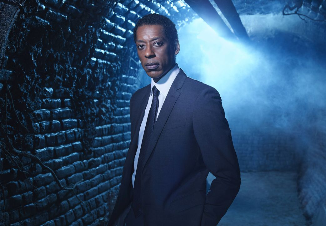 (2. Staffel) - Muss sich einigen Problemen stellen: Captain Irving (Orlando Jones) ... - Bildquelle: 2014 Fox and its related entities. All rights reserved.