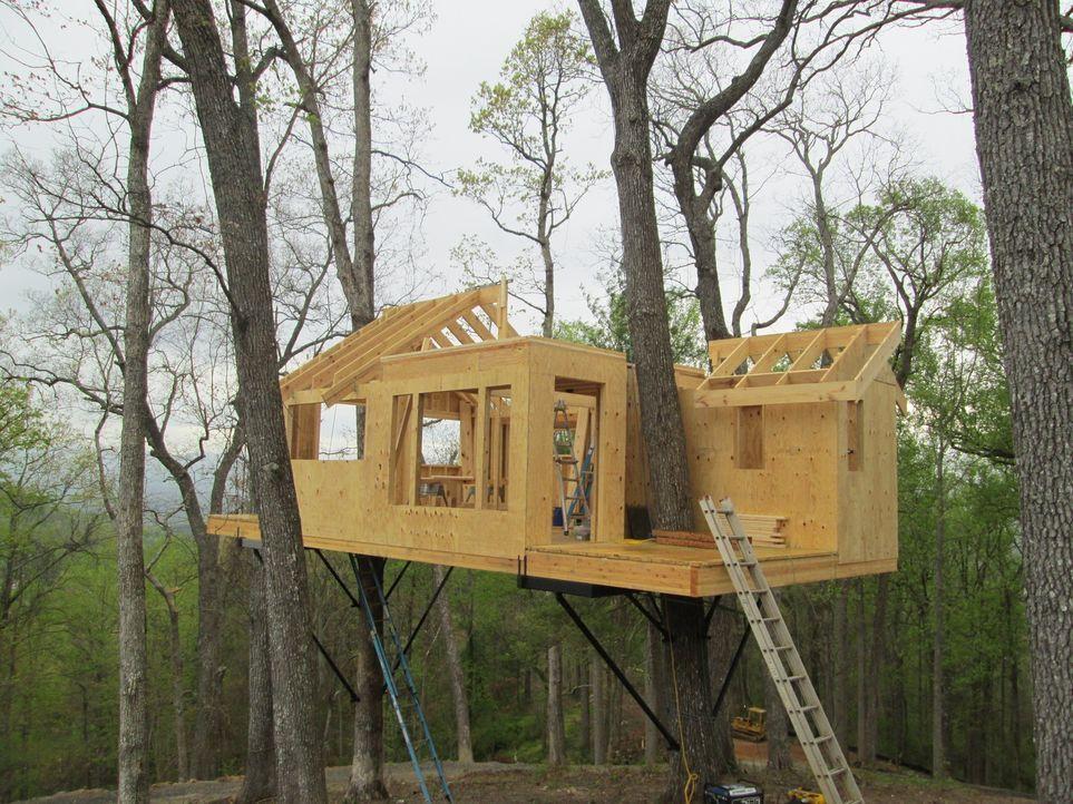 Die Treehouse Guys bauen in den Wäldern Ashevilles einen echten Wohntraum hoch oben in den Bäumen. Das herausfordernde Projekt verlangt den harten J... - Bildquelle: 2016,DIY Network/Scripps Networks, LLC. All Rights Reserved.