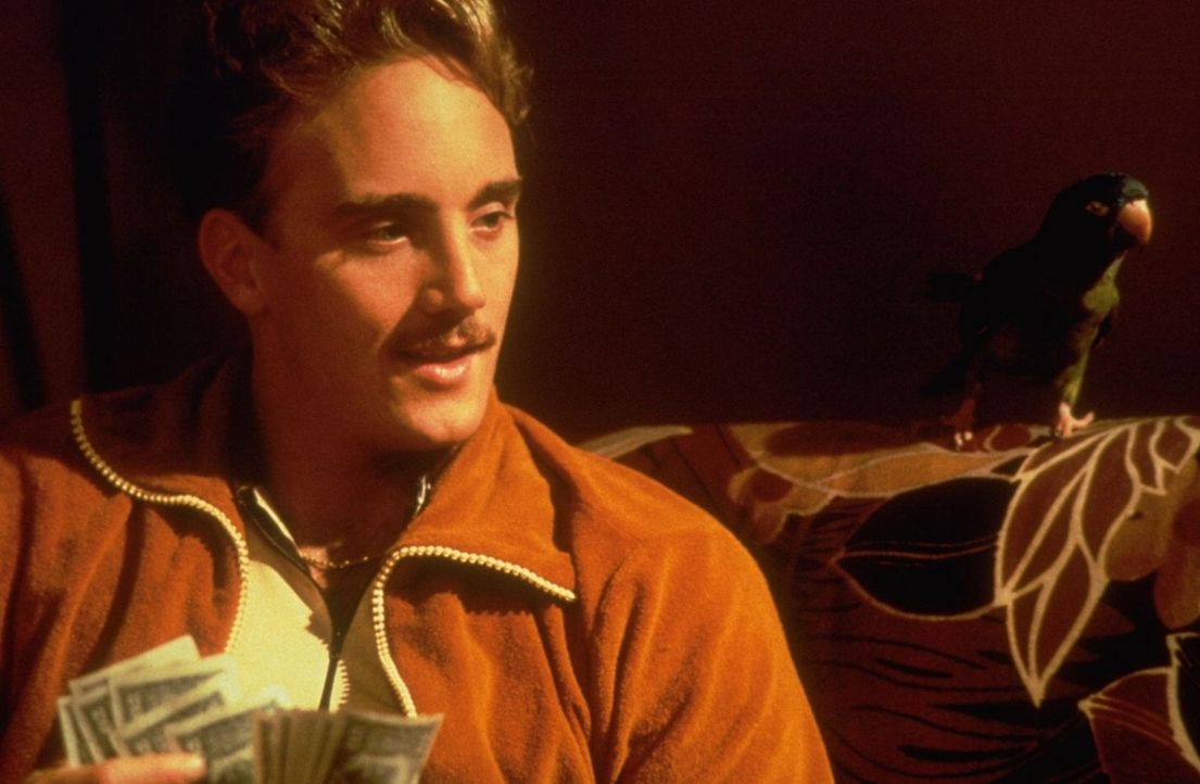 Um möglichst schnell an möglichst viel Geld heranzukommen, fängt der hinterhältige Benny (Jay Mohr, l.) den sprachbegabten Papagei Paulie ein ... - Bildquelle: DreamWorks