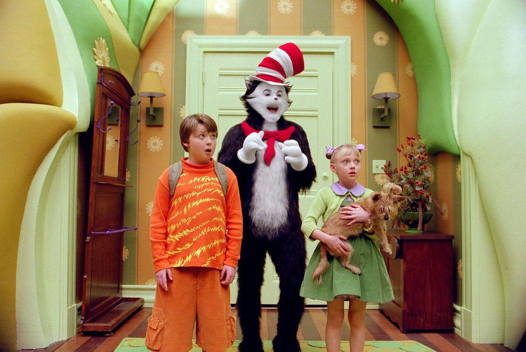 Ausgerechnet heute will der lustige Kater mit Hut (Mike Myers, M.) mit Conrad (Spencer Breslin, l.) und Sally (Dakota Fanning, r.) die größten Fla... - Bildquelle: TM &   2003 DreamWorks LLC. All Rights Reserved.