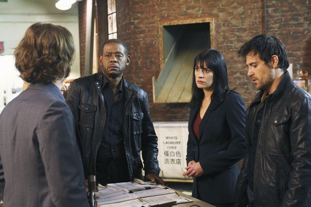 Um einen neuen Fall zu lösen, ermitteln Reid (Matthew Gray Gubler, l.), Prentiss (Paget Brewster, 2.v.r.) und das restliche Team mit den Kollegen S... - Bildquelle: Touchstone Television