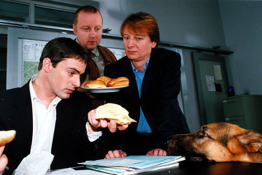 Rex will auch Wurstsemmeln! Brandtner (Gedeon Burkhard, l.), Kunz (Martin Weinek, M.) und Böck (Heinz Weixelbraun, r.) stehen bereit. - Bildquelle: Ali Schafler Sat.1