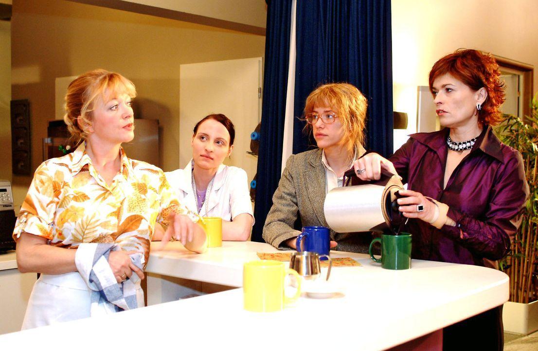 Lisa (Alexandra Neldel, 2.v.r.) verschweigt Helga (Ulrike Mai, l.), Anna (Claudia Falco, 2.v.l.) und Sophie (Gabrielle Scharnitzky, r.) gegenüber d... - Bildquelle: Monika Schürle Sat.1
