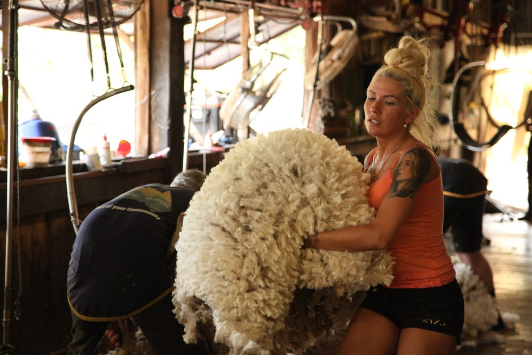 In Australien erfährt Erotiksternchen Mareike, was harte Arbeite heißt ... - Bildquelle: kabel eins
