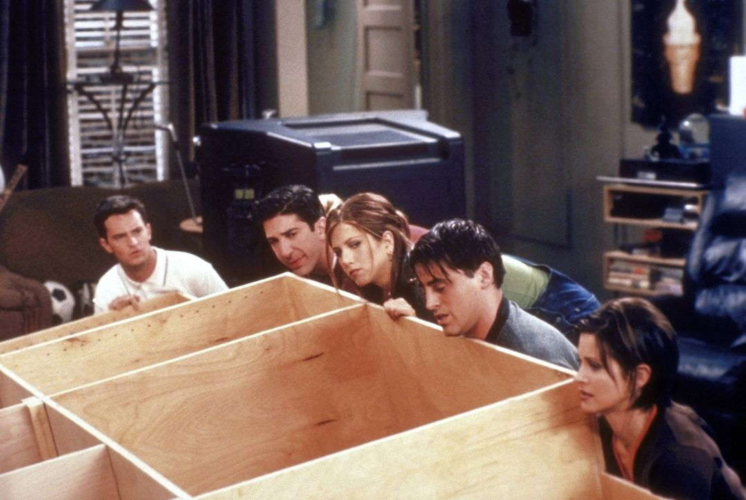 (v.l.n.r.) Kritisch begutachten Chandler (Matthew Perry), Ross (David Schwimmer), Rachel (Jennifer Aniston), Joey (Matt LeBlanc) und Monica (Courten... - Bildquelle: TM+  2000 WARNER BROS.