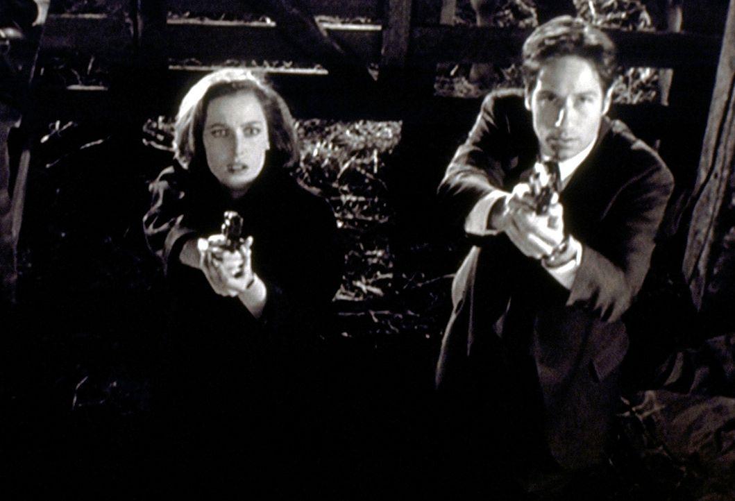 Mulder (David Duchovny, r.) und Scully (Gillian Anderson, l.) begegnen auf ihrer Suche nach einem angeblichen Monster dem bedauernswerten Opfer eine... - Bildquelle: TM +   2000 Twentieth Century Fox Film Corporation. All Rights Reserved.