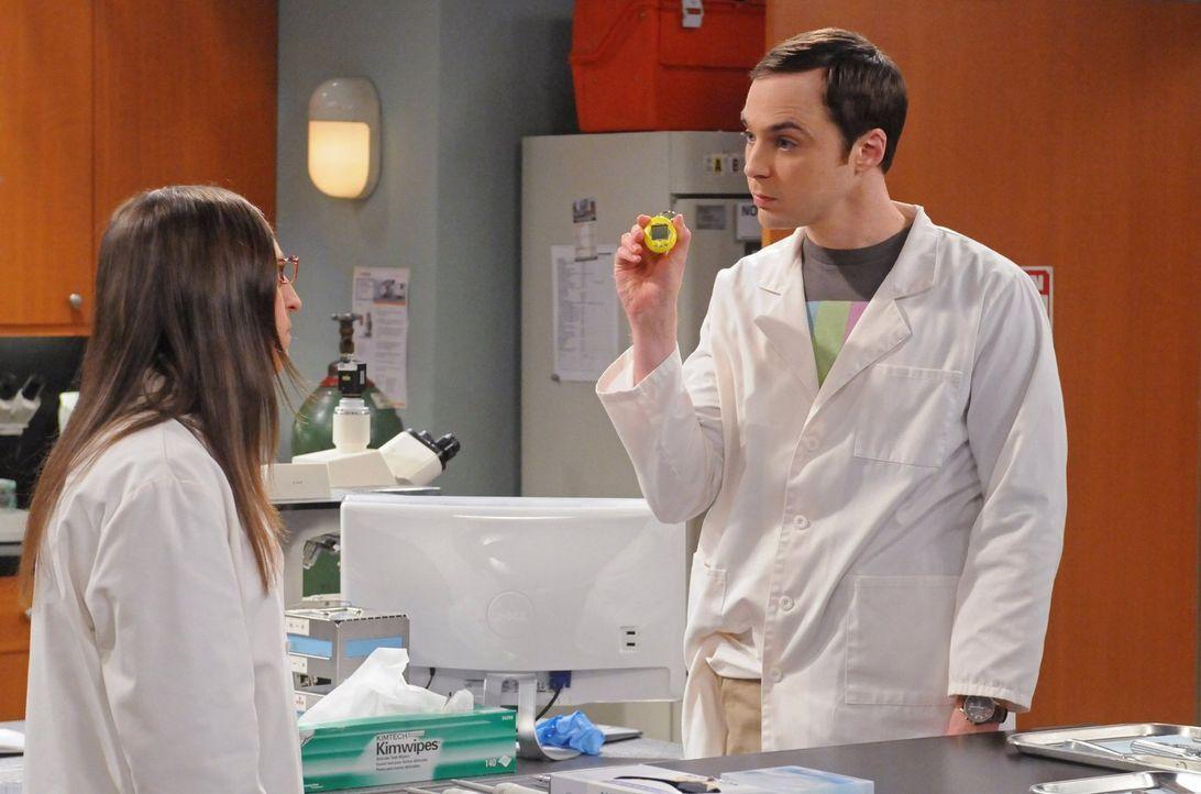 Sheldon (Jim Parsons, r.) wird dazu gezwungen, Urlaub zu machen. Daraufhin beschließt er zum Leidwesen von Amy (Mayim Bialik, l.), gemeinsam mit ihr... - Bildquelle: Warner Bros. Television