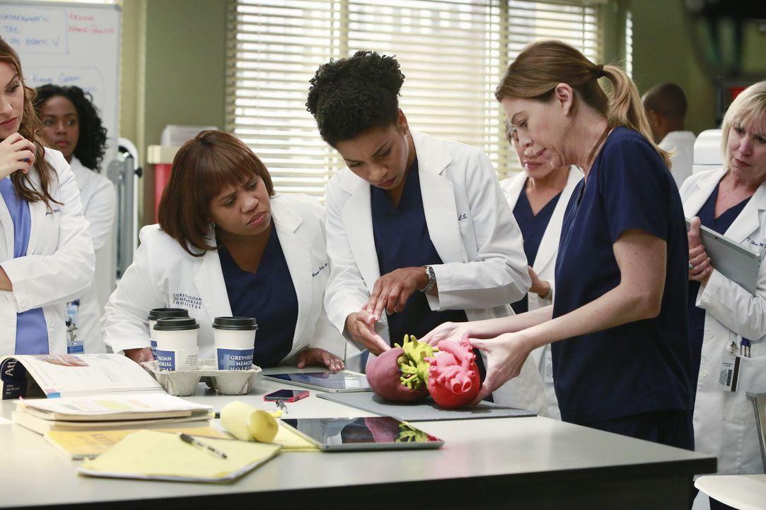 Das Ärzte um Meredith (Ellen Pompeo, vorne r.), Miranda (Chandra Wilson, vorne l.) und Maggie (Kelly McCreary, vorne M.) suchen nach einer Lösung, u... - Bildquelle: ABC Studios