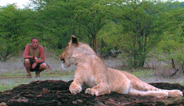 Löwenbegegnung - Bildquelle: Richard Gress