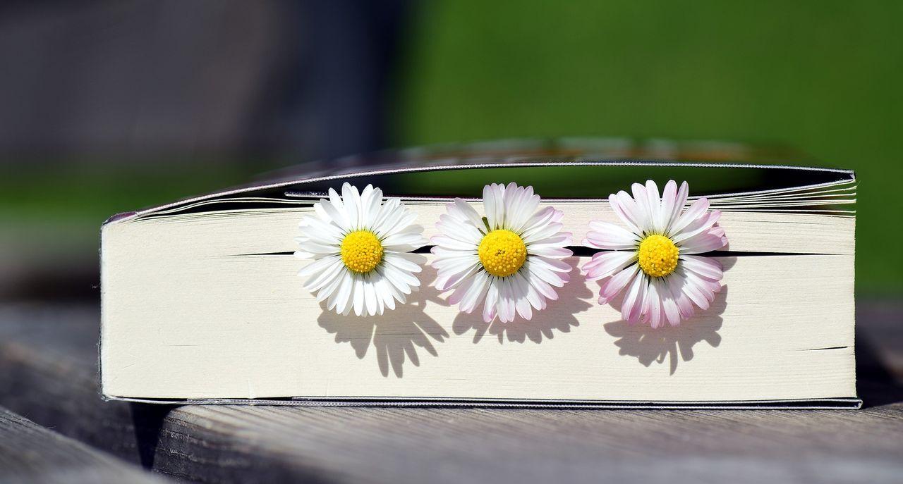 book-2319957_1920