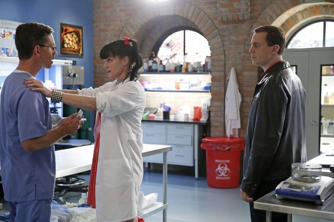 Während sich Jimmy (Brian Dietzen, l.) auf seine Vaterschaft vorbereitet, ermitteln McGee (Sean Murray, r.) und Abby (Pauley Perrette, M.) in einem... - Bildquelle: CBS Television