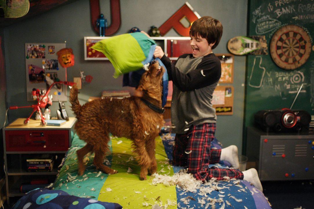 Haben viel Spaß miteinander: Shane (Josh Hutcherson, r.) und Rexx (l.) ... - Bildquelle: New Regency Productions, Inc.
