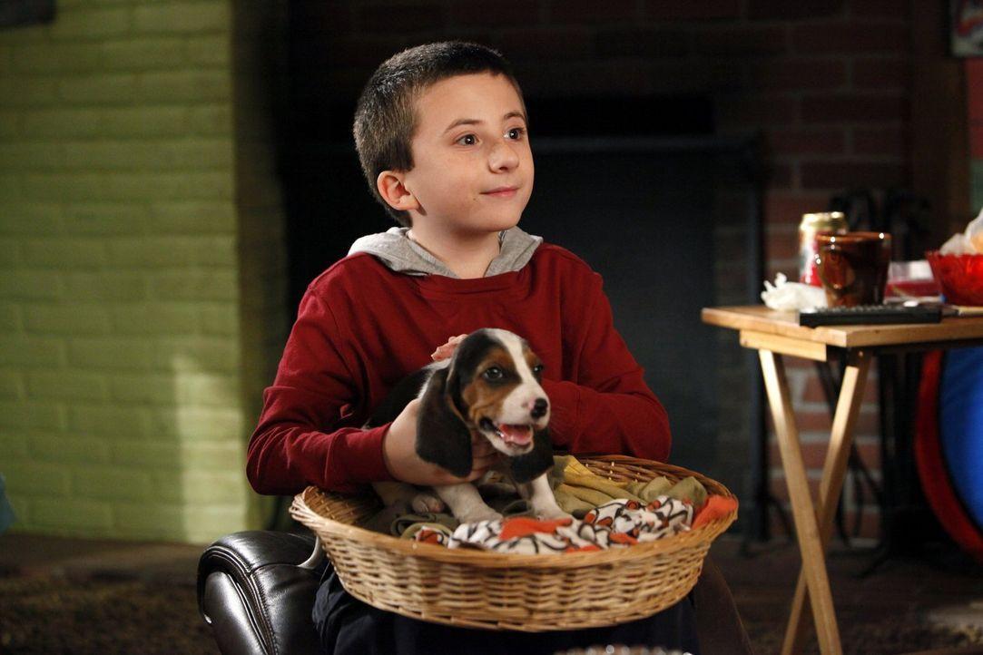 Will sich unbedingt um den Hund seiner Tante kümmern: Brick (Atticus Shaffer) ... - Bildquelle: Warner Brothers