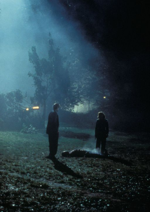 Und wieder wurde ein Mann vom Blitz getroffen. Da die Blitzschlagquote weit über Landesdurchschnitt liegt, beginnen Mulder (David Duchovny, l.) und... - Bildquelle: TM +   2000 Twentieth Century Fox Film Corporation. All Rights Reserved.