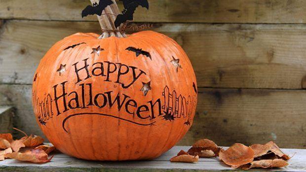 Fledermäuse gehören bei der Halloween-Deko dazu.