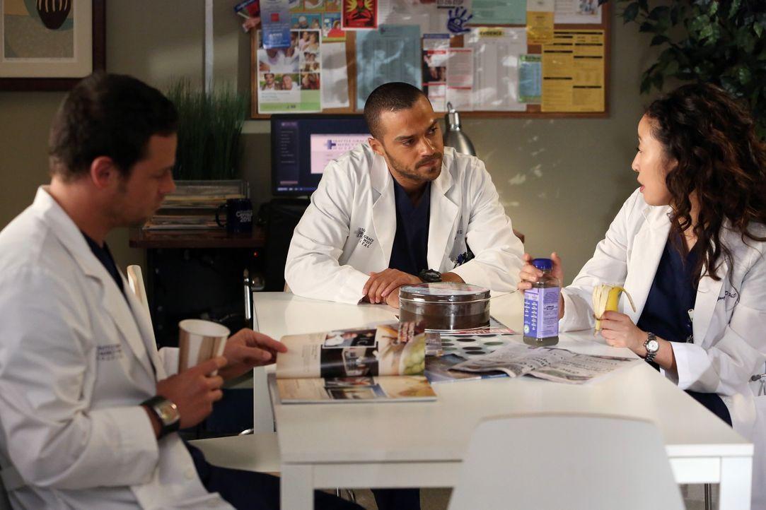 Haben so ihre Probleme: Cristina (Sandra Oh, r.), Alex (Justin Chambers, l.) und Jackson (Jesse Williams, M.) ... - Bildquelle: ABC Studios