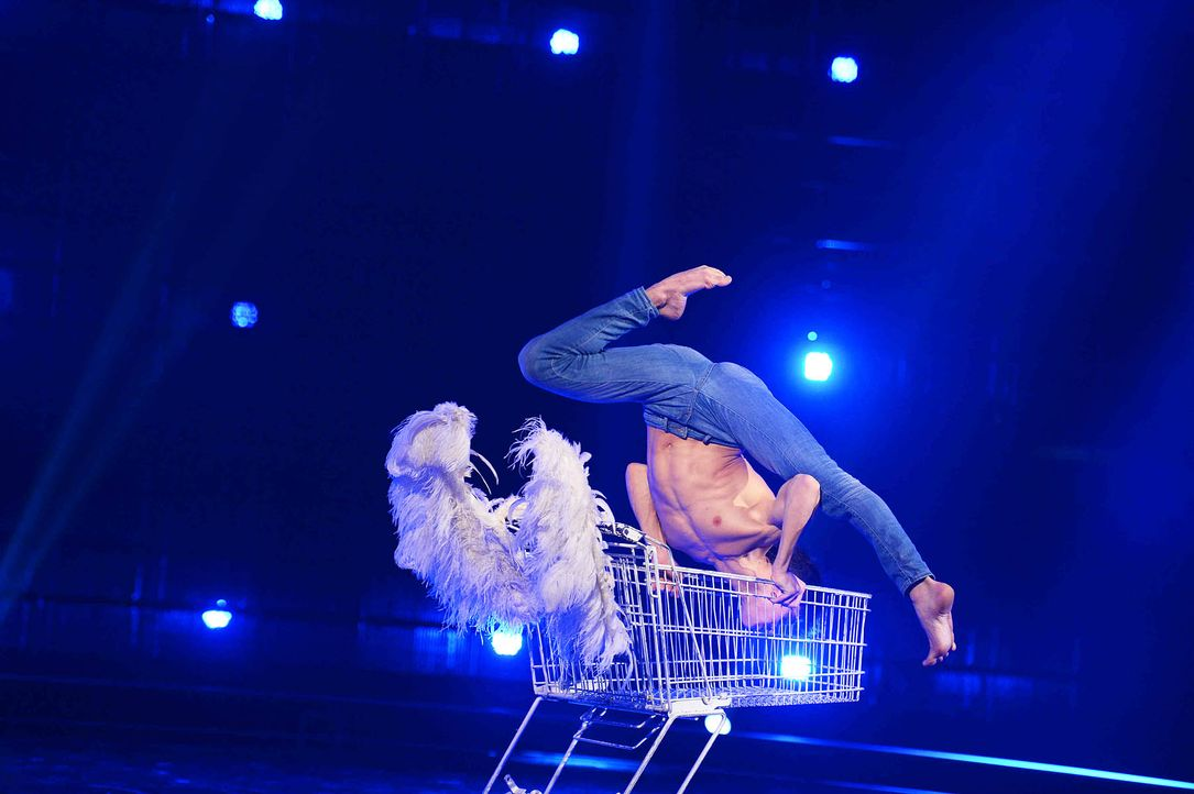 Got-To-Dance-David-Pereira-05-SAT1-ProSieben-Willi-Weber - Bildquelle: SAT.1/ProSieben/Willi Weber